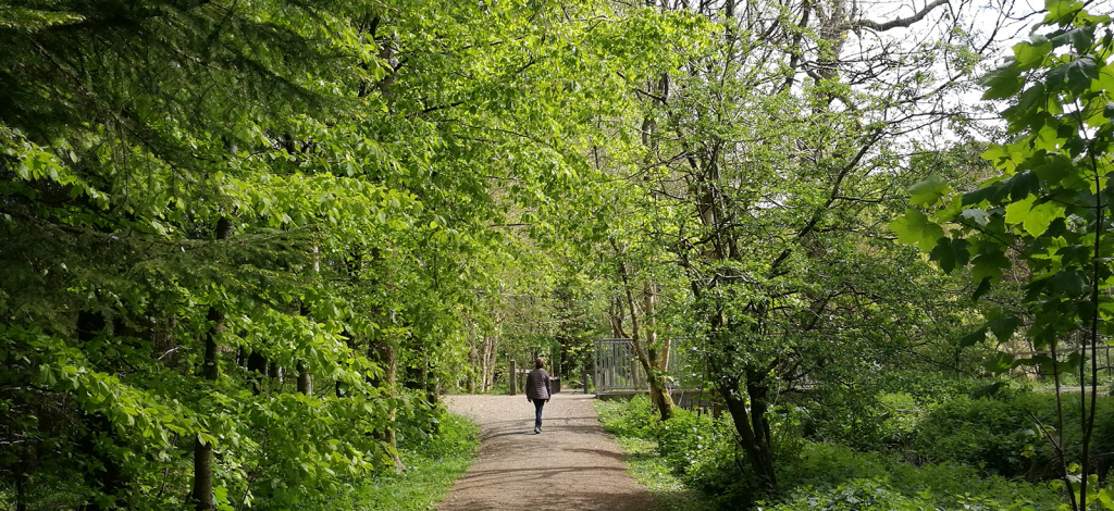 woman on path to a bridge over running water